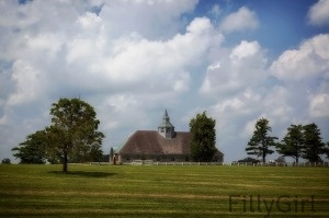 lexington-kentucky horse farm